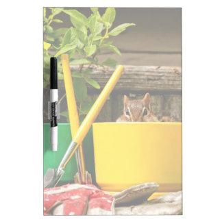 Chipmunk que cultiva un huerto lindo pizarra