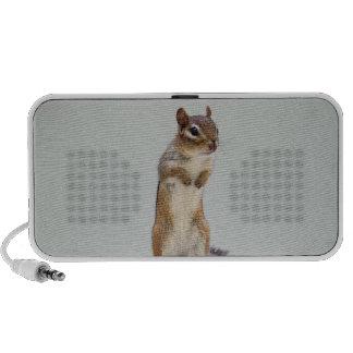 Chipmunk que se levanta la foto iPod altavoz