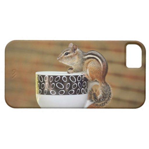 Chipmunk que se sienta en una taza de café de iPhone 5 fundas