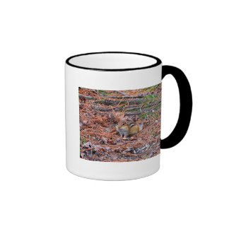 Chipmunk Resting Coffee Mugs