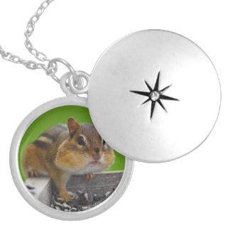 chipmunk round locket necklace