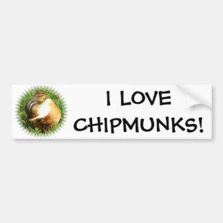 Chipmunk saying grace car bumper sticker