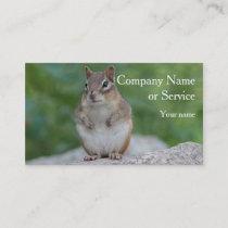 Chipmunk sitting upright business card