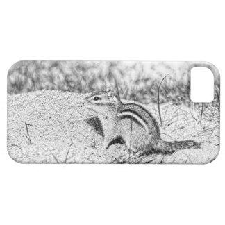 Chipmunk Sketch iPhone SE/5/5s Case