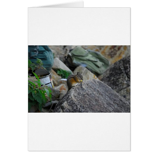 Chipmunk Snack Card