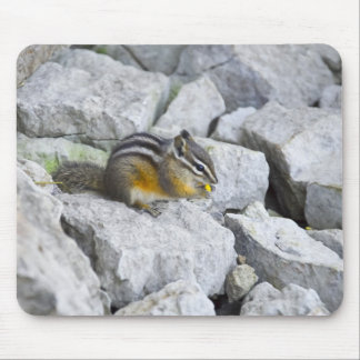 Chipmunk Snack Mouse Pad