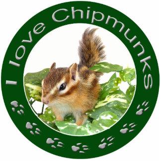 chipmunk, Squirrel and photo Cutout