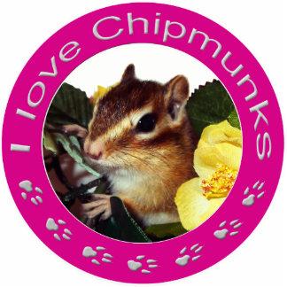 chipmunk, Squirrel and photo Statuette