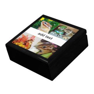 chipmunk , squirrel , gift box