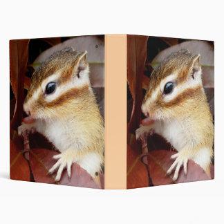Chipmunk , Squirrel . (llustration , photo) Binder