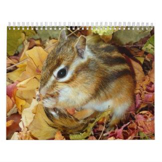 chipmunk, Squirrel, photo, calendar and 24 months