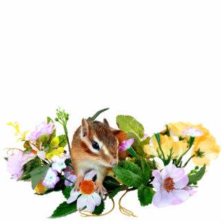 chipmunk , Squirrel ,  photo Cutout