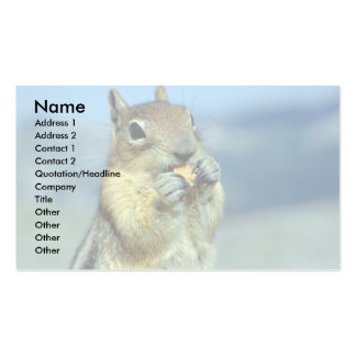 Chipmunk Standing, Frontal Business Cards
