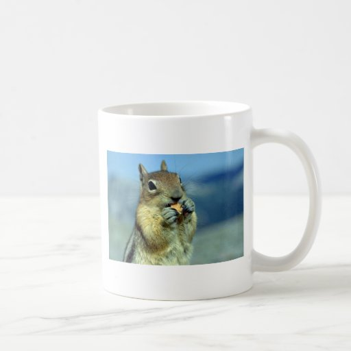 Chipmunk Standing, Frontal Classic White Coffee Mug