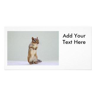 Chipmunk Standing Up Photo Card