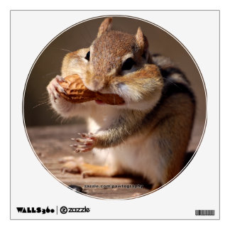 Chipmunk Stuffing His Face Wall Decor