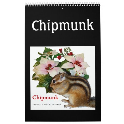 chipmunk  (USA) Calendar