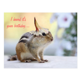 Chipmunk Wearing Flower Party Hat Post Card