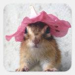 Chipmunk wears flower hat