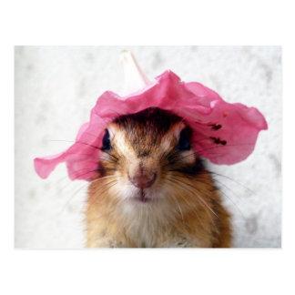 Chipmunk wears flower hat postcard