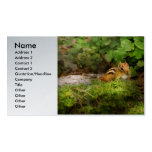 Chipmunk - What a cutie Double-Sided Standard Business Cards (Pack Of 100)