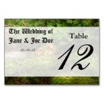 Chipmunk - What a cutie Table Card