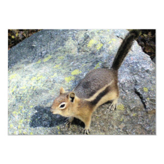 Chipmunk Wildlife Invitation
