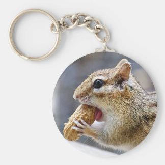 Chipmunk with a peanut key chain