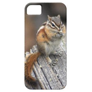 Chipmunk with Bouquet phone case
