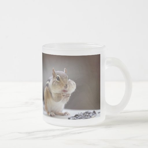 Chipmunk with Cheeks Full Photo 10 Oz Frosted Glass Coffee Mug