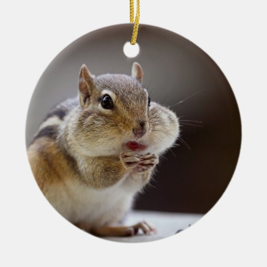 Chipmunk with Cheeks Full Photo Ceramic Ornament