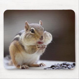 Chipmunk with Cheeks Full Photo Mouse Pad