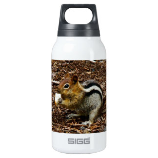 CHIPMUNK WITH NUT INSULATED WATER BOTTLE
