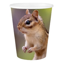 Chipmunk with peanuts paper cup