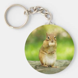 Chipmunk with treat keychains