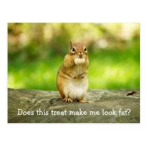 Chipmunk with treat postcard