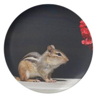 Chipmunk y foto de las flores del rojo platos de comidas
