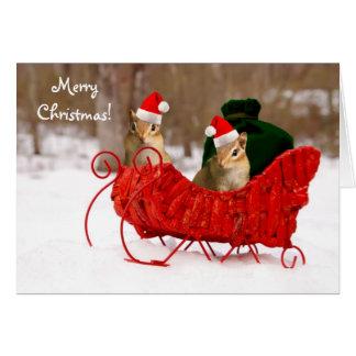 Chipmunks adorables del bebé de Santa en tarjeta d
