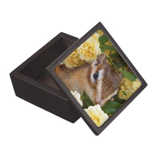 Chipmunks, ardilla, caja de regalo cajas de regalo de calidad