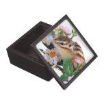 Chipmunks, caja de regalo caja de recuerdo de calidad