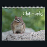 """Chipmunks Calendar<br><div class=""""desc"""">Nature calendar of adorable chipmunks to enjoy through the year.</div>"""