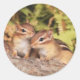 Chipmunks del bebé de los mejores amigos pegatina redonda