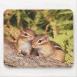 Chipmunks del bebé de los mejores amigos tapete de ratones