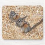 Chipmunks gemelos Mousepad Alfombrilla De Raton