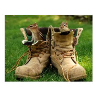 Chipmunks in Boots Postcard
