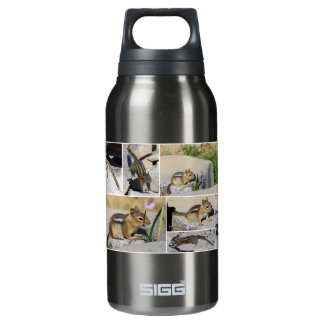 Chipmunks! Insulated Water Bottle