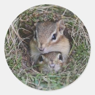 Chipmunks lindos Smooshed del bebé en la Pegatina Redonda