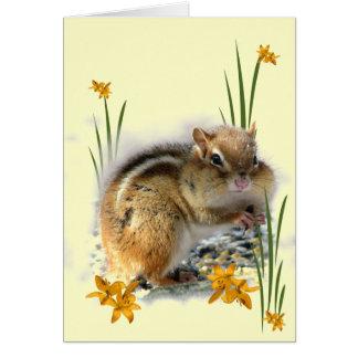 Chipmunk's Springtime Card