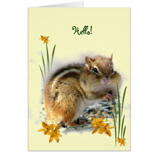 Chipmunk's Thinking of You Card