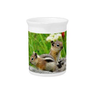 Chipmunks y wildflowers jarron